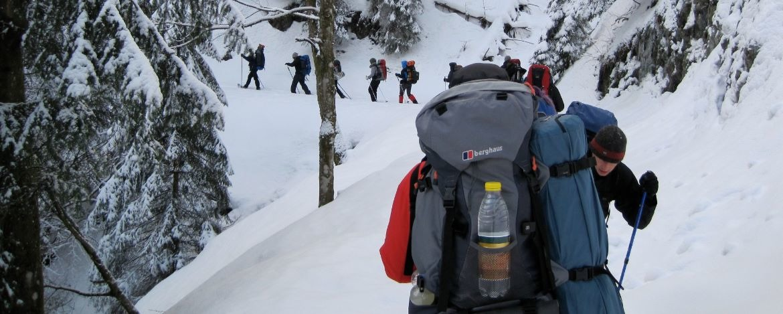 Durch den Winterwald laufen