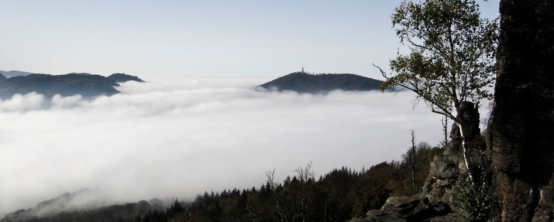 Feldbergblick mit Nebel
