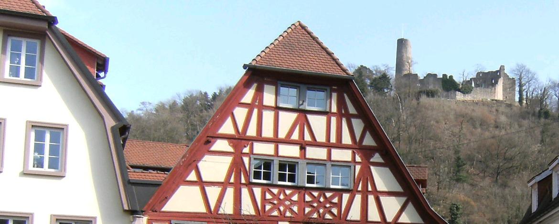 Blick auf die Burg Windeck