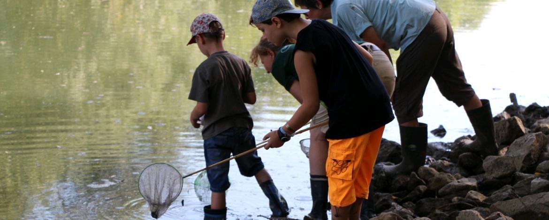 Kinder bei der Wasseruntersuchung