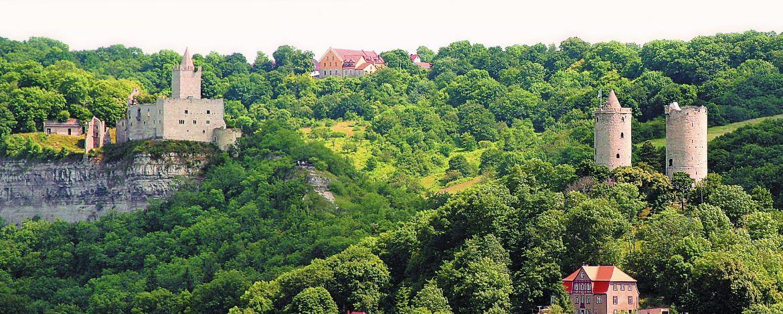 Neuenburg in Freyburg