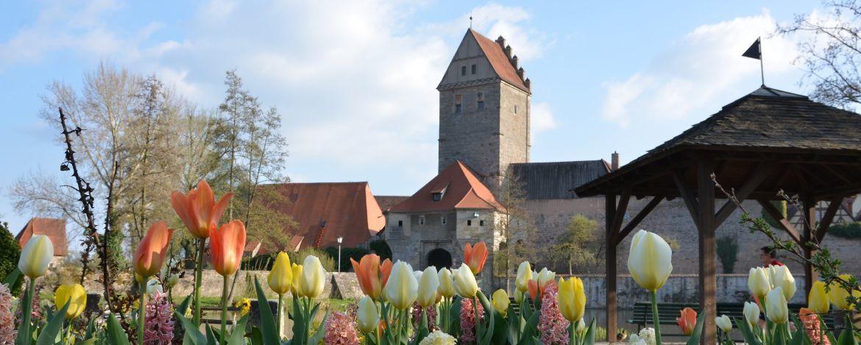 Altstadt um die Jugendherberge Dinkelsbühl