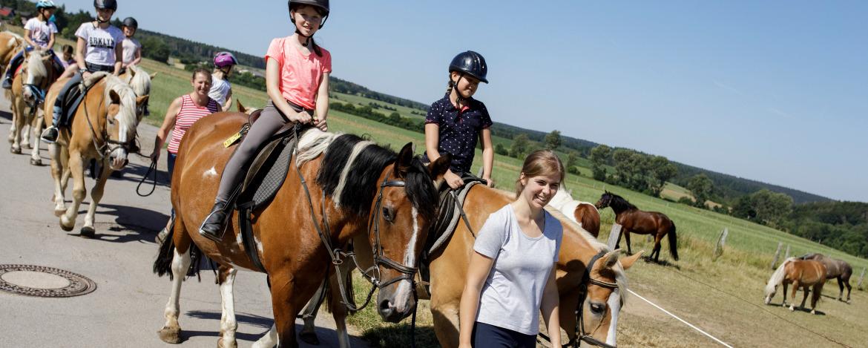 Ausritt: Eine Gruppe Pferde mit Reiter*innen beim ersten begleiteten Ausritt.