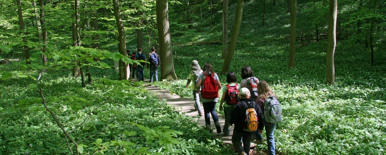 Gruppenreisen Mühlhausen