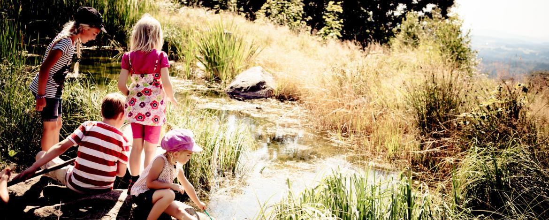 Kleine Wasserforscher