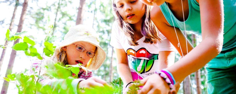 Die Kinder erleben den Wald als Lebensraum