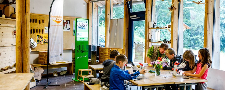 Ein spannendes Programm rund um das Thema Natur am Lernort Natur