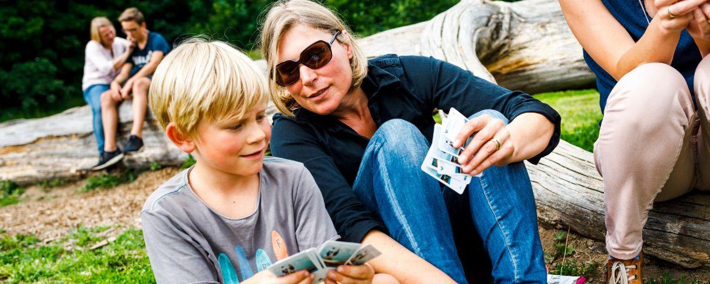 Freizeitspaß auf dem großzügigen Aussengelände der Jugendherberge