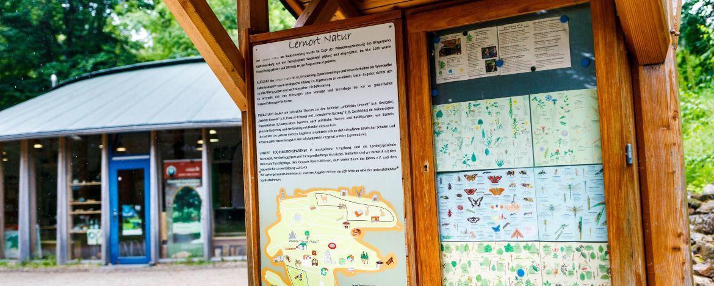 Lernort Natur auf dem Katharinenberg