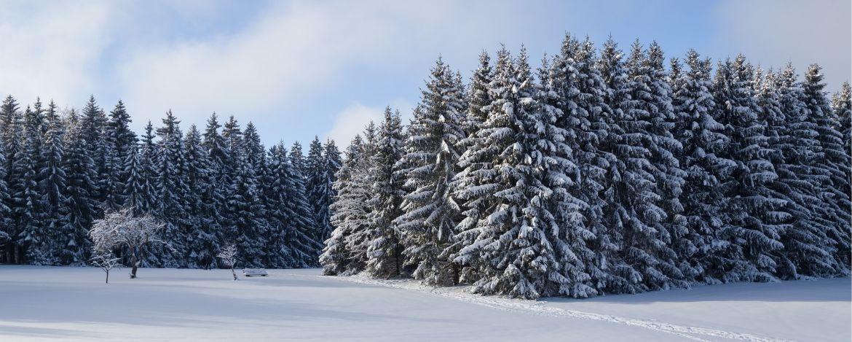 Individualreisen Sonnenbühl-Erpfingen