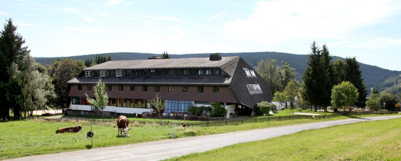 Individualreisen Titisee-Neustadt