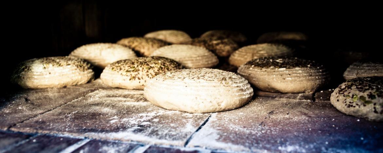 Brot backen im hauseigenen Brotbackofen