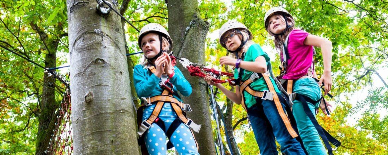Schülerfahrt zum <br />  Kletterwald inkl. Teamtraining
