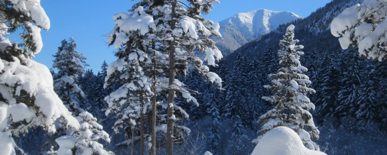Winterwonderland Berchtesgaden