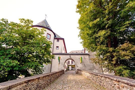 Von Bäumen und Burgen